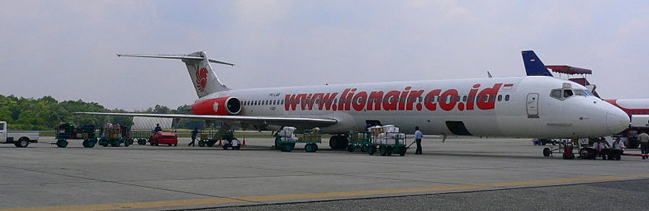 Indonesian airline Lion Air sentenced for discrimination against disabled travellers